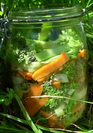 Fermented broccoli and carrot