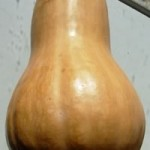 How to make Fermented Butternut Squash